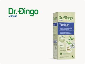 Dr. Dingo